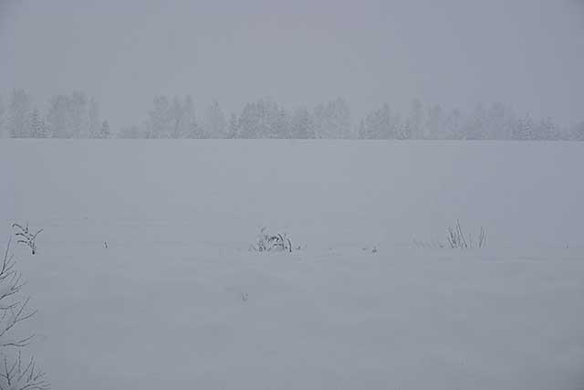 snowattokachi1