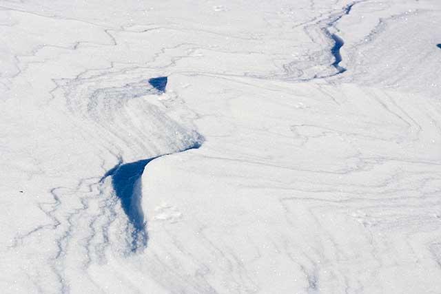 雪原 北海道
