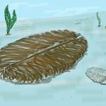 生命の旅4 エディアカラ生物群の繁栄と絶滅