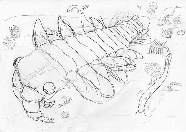 Cambrian-explosion