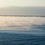 狩猟罠免許と海と水蒸気と