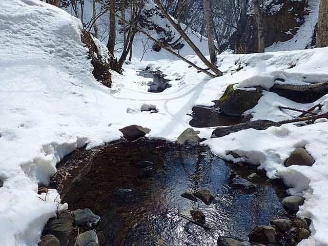 早春の山を流れる川