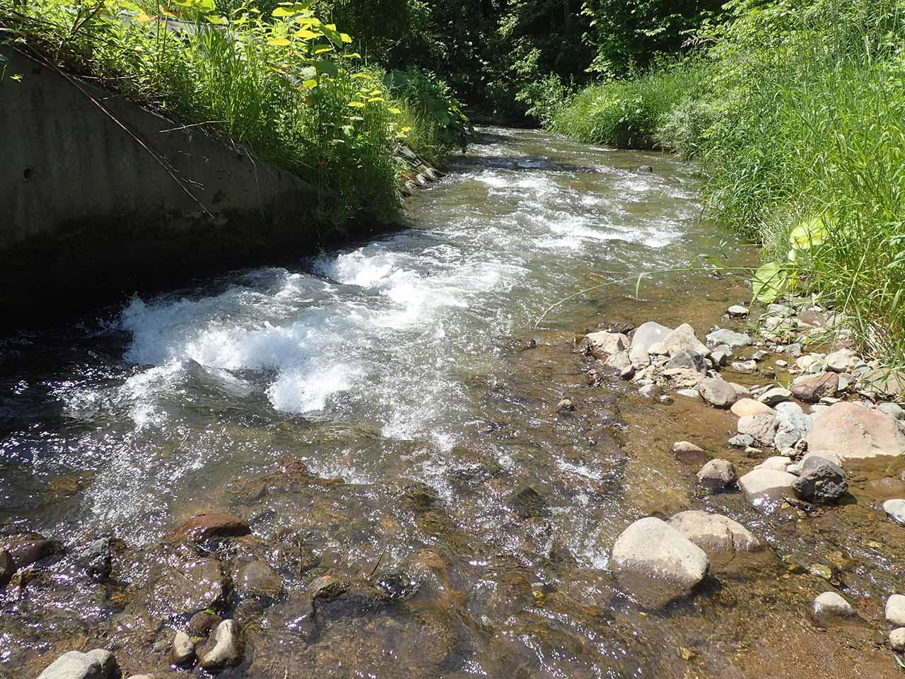 river 河川 上流