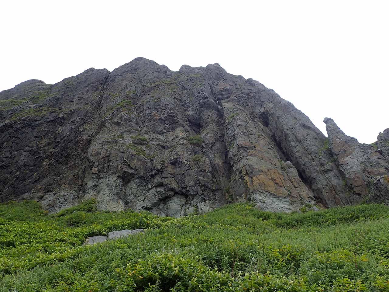 知床 海岸 風景 崖
