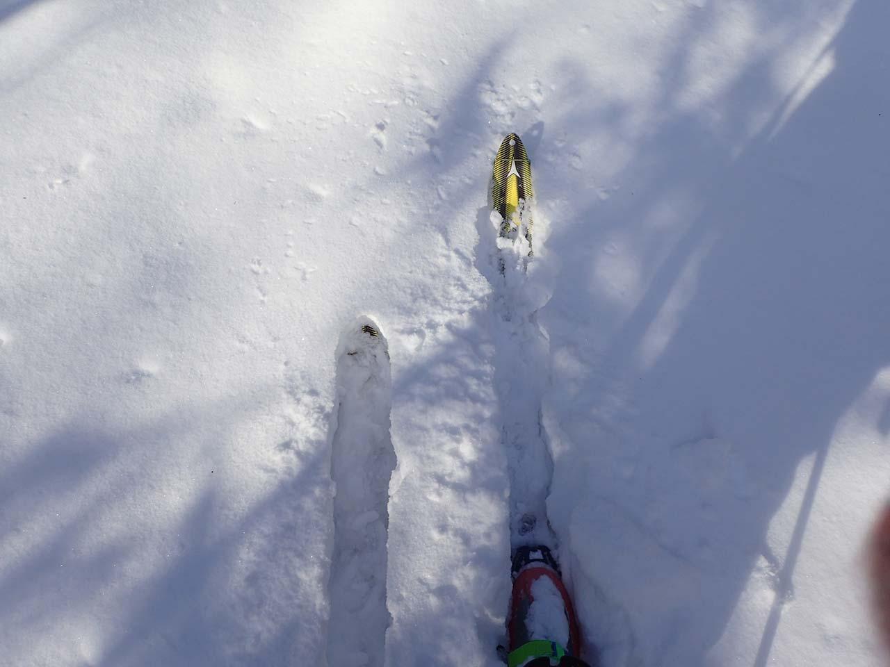 北海道 山スキー 狩猟