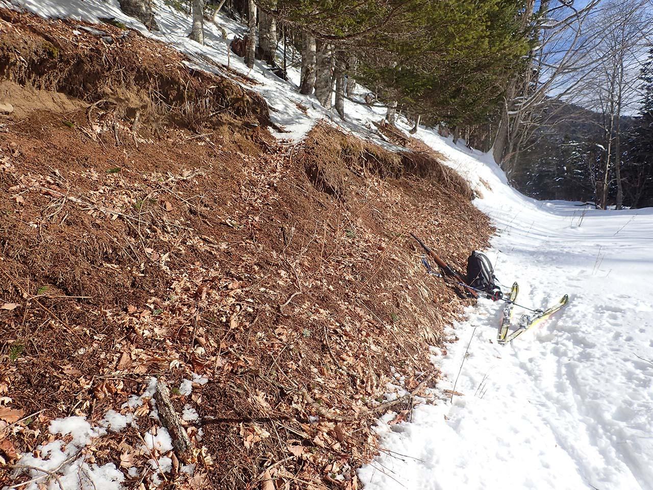 北海道 狩猟 山スキー 雪景色