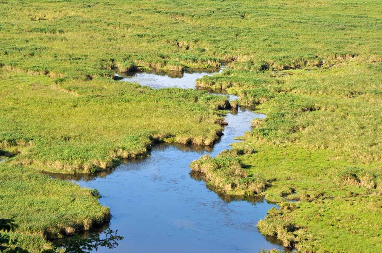 釧路湿原の湖沼
