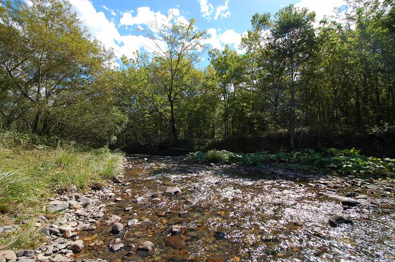 クチョロ川
