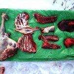 ジビエ 狩猟したエゾシカ肉の7つの各部位