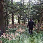 【事故記録】2018.8北海道砂川市猟銃所持許可取り消し事件 その3 砂川市駆除現場にて
