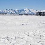 狩猟期間は冬 北海道のハンターは厳冬の中をいく