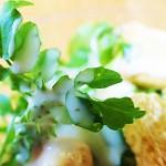クレソン 清流の万能野菜はダイエットとデトックス、美容と健康に