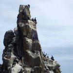 探検@知床 知床岬トレッキングその3 海岸線と海鳥の巣