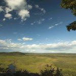 釧路湿原 タンチョウの命を繋ぎ育んだ270k㎡の湿地と乾燥化