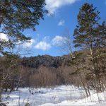 2019年1月15日から北海道 道有林も銃猟規制へ 期間、内容など