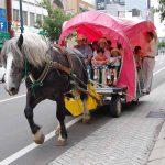 馬と共に歩む北海道開拓史