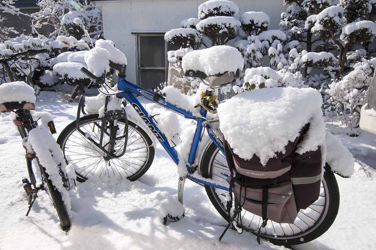 北海道の春雪