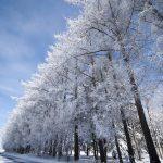 北海道は5月のGWまで雪が降る