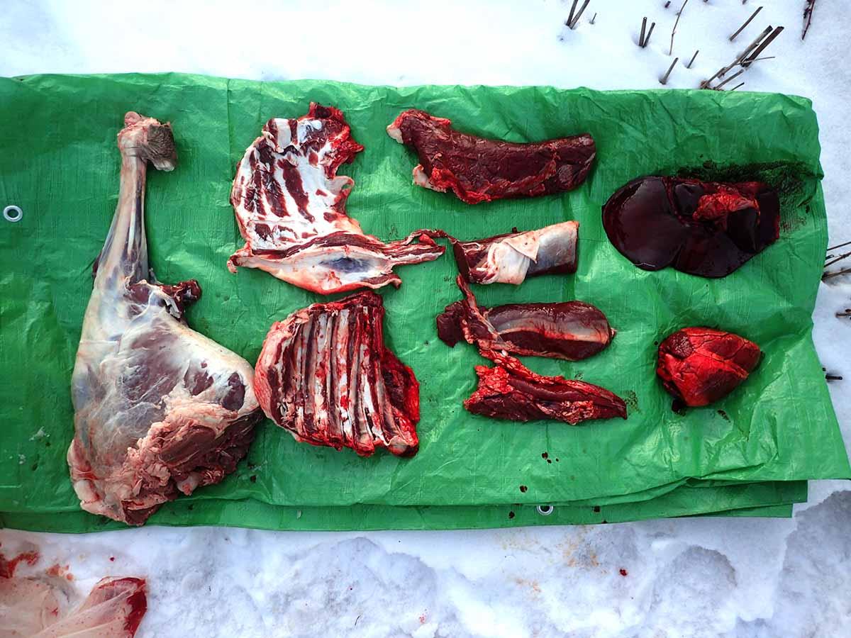 エゾシカ肉の解体後