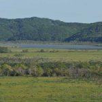 釧路湿原の課題 乾燥化問題