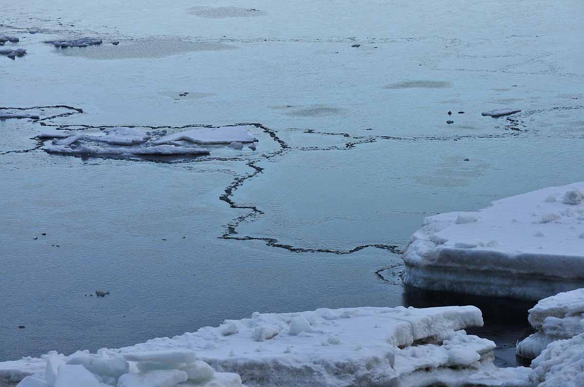 流氷の足跡