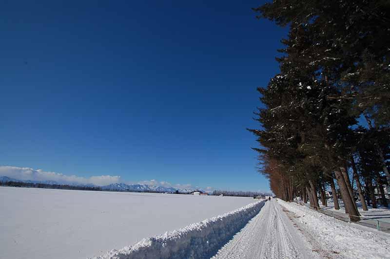 北海道冬景色