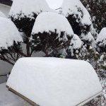 大雪警報発表 北海道札幌周辺や上川・十勝地方を中心に広く警報が出される