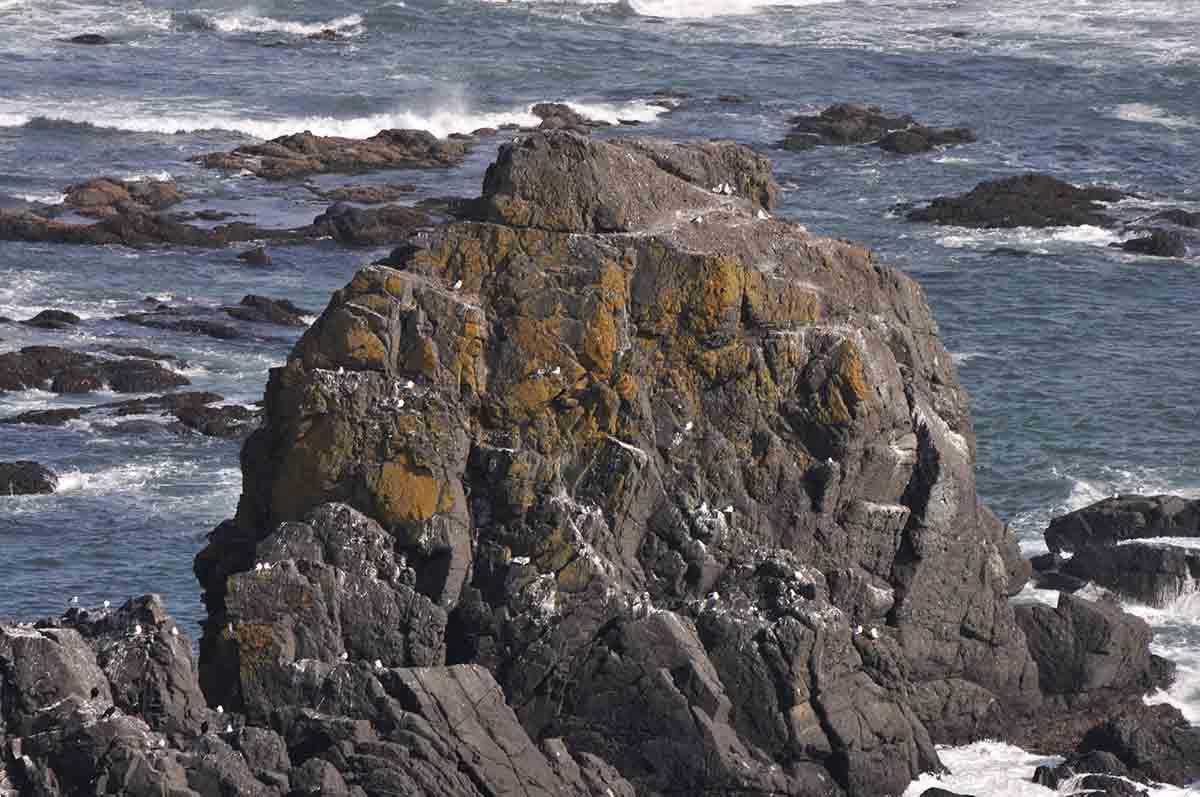 襟裳岬の岩礁