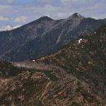 アポイ岳の各ポイントや盗掘問題、アポイ岳ファンクラブ、2021年の高山植物の見頃など