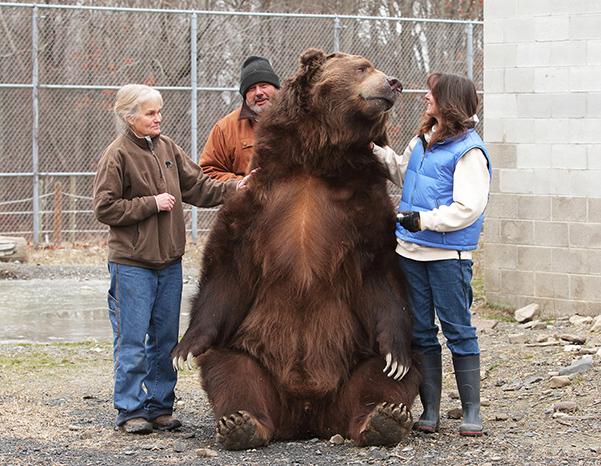 Orphaned Wildlife Center