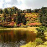 愁雨きたりなば2021 秋の雨は北海道大雪山での紅葉の始まりの合図